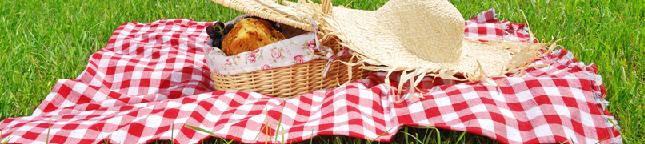 Spring/Summer Picnic Hamper Recipe