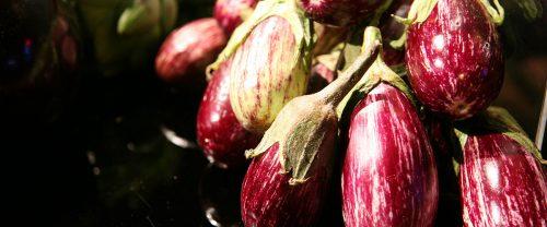 fresh produce eggplants