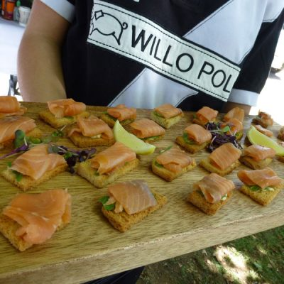Salmon catering