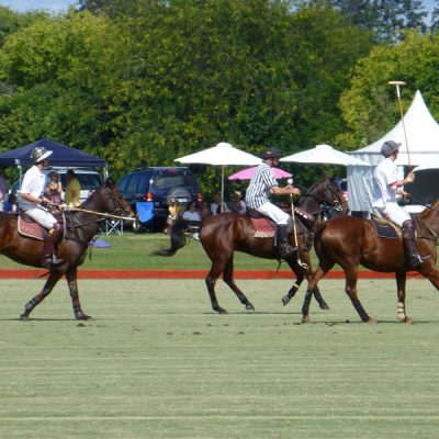 Polo Referee and players