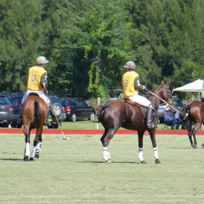Polo being played at Windsor